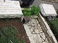 Mount Herzl - Mivza Kadesh Plot IMG 1231.JPG