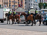 Mounted police, Stockholm (P1090713).jpg