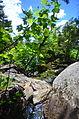 Mt Monadnock (14481568952).jpg