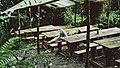 Mujer acostada en La Chorrera, Cundinamarca, Colombia (Unsplash).jpg