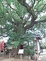 Muryōji Ookusu.jpg