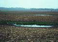 NRCSSD01005 - South Dakota (6029)(NRCS Photo Gallery).tif