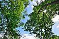 Nature Park 12.JPG