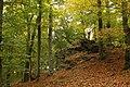Nature reserve Vlčí důl in autumn 2014 (11).JPG