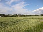Nebenbahn Wennemen-Finnentrop (5817665634).jpg