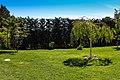 New Mos Eisley - panoramio (21).jpg