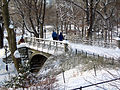 New York. Central Park. Bridge. Snowy (2798100692).jpg