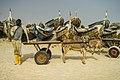 Nouakchott Donkey Cart (110327281).jpeg