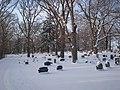 Oakwood Cemetery - panoramio.jpg