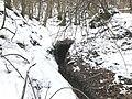 Oberkochen Brunnenquelle Winter.jpg