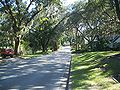 Ocala Hist Dist - 11th Ave looking south.jpg