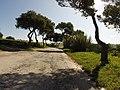 "Ocean Heights, ""Ocean Heights"" Triq Raddet Ir-Roti, St Paul's Bay SPB10, Malta - panoramio.jpg"