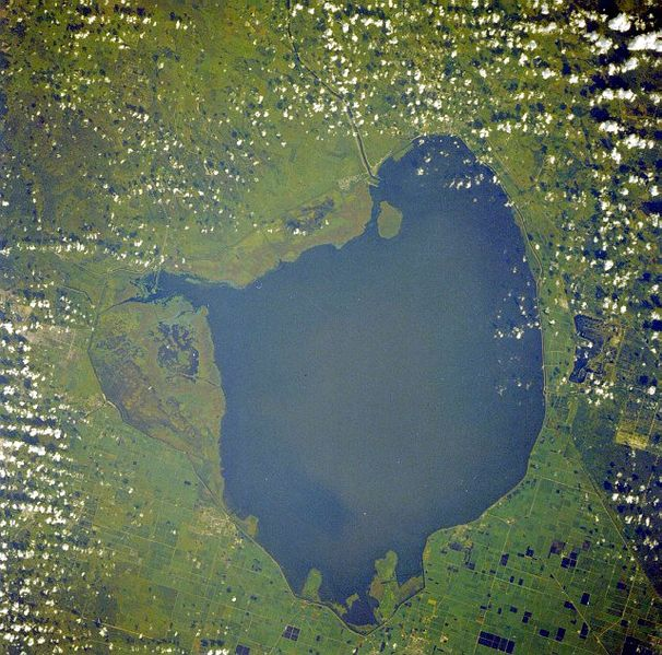 Dosiero:Okeechobee lake from space.jpg