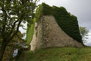 Cowal - Castle Lachlan