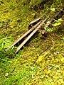 Old Rail Tracks - panoramio.jpg