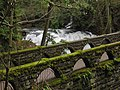 Old Stone Bridge Whatcom Falls Park Bellingham Washington.jpg