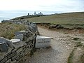 On the coast path near Tilly Whim and Anvil Point Lighthouse - geograph.org.uk - 1627753.jpg