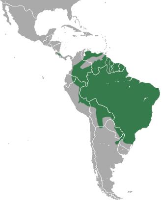 Oncilla - Image: Oncilla area