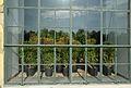 Orangery Schönbrunn - window plants 03.jpg