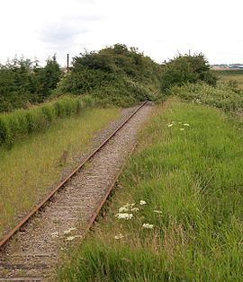Overgrown railway south of Wisbech - geograph.org.uk - 1349131.jpg