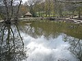 Overton Hall - Pond next to Sewage Treatment Works - geograph.org.uk - 621454.jpg