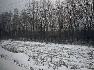 Yakovlevsky District, Belgorod Oblast - Landscape at the railway station of Ozerovo in the east of the district