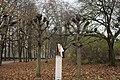 PM 114141 B Ieper.jpg
