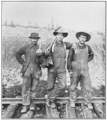 PSM V79 D152 Austrian working men.png