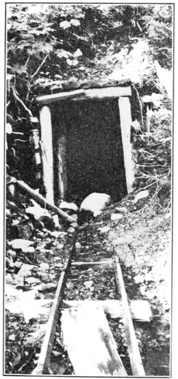 PSM V79 D425 Purdy claim tunnel entrance west of shepherd creek.png