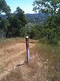 Pacheco Ridge Rd trail branch to Brem Spring - panoramio.jpg