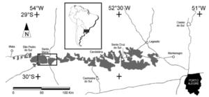 Santa Maria Formation - Image: Paleorrota 3