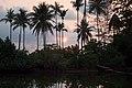 Palms on the beach lake, Koh Chang, Thailand.jpg