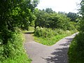 Park Pathways - geograph.org.uk - 3052546.jpg