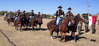 Chief (horse) - Though the U.S. Army continues to field equestrian units for ceremonial purposes, Chief was the last combat cavalry charger.