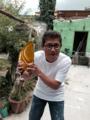 Pastes de Pachuca.png