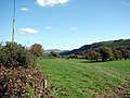 Pasture in Dyffryn Dyfi - geograph.org.uk - 242050.jpg