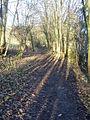 Path back to Sprotborough - geograph.org.uk - 1657166.jpg