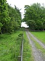 Path through plantation near Unthank Hall - geograph.org.uk - 451193.jpg