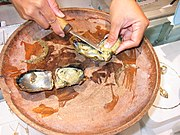 Pearls being removed from pearl oysters