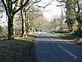 Peckleton Lane, Leicester Forest West - geograph.org.uk - 703290.jpg