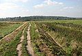 Peddars Way-Norfolk Coast Path through Fresh Marshes - geograph.org.uk - 980713.jpg