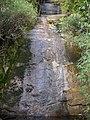 Pedra do Sino trail^^^ Véo da Noiva^ - panoramio.jpg