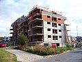 Pekařská, Botanica Vidoule, stavba domu.jpg