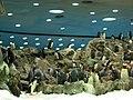 Penguins Loro Parque 07.JPG