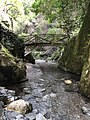 Pequena ponte sobe o lago.jpg