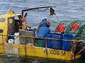 Pesca de centolla en la Bahía Ushuaia 20.JPG