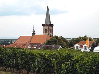 Pfeddersheim - Church and vineyards in Pfeddersheim