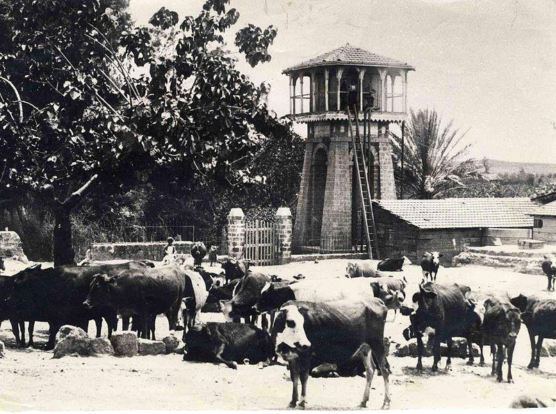 מגדל המים בראשון לציון