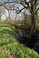 Pincey Brook looking east near Church Lane, Sheering, Essex, England 02.jpg