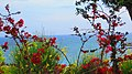 Pireas - panoramio (5).jpg